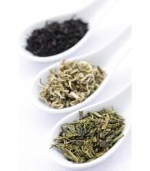 Balíček čajů z celého světa